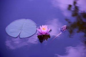 10 Sinais Comuns De Despertar Espiritual
